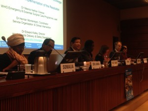 2015_May_WHA_Surgery side event panel
